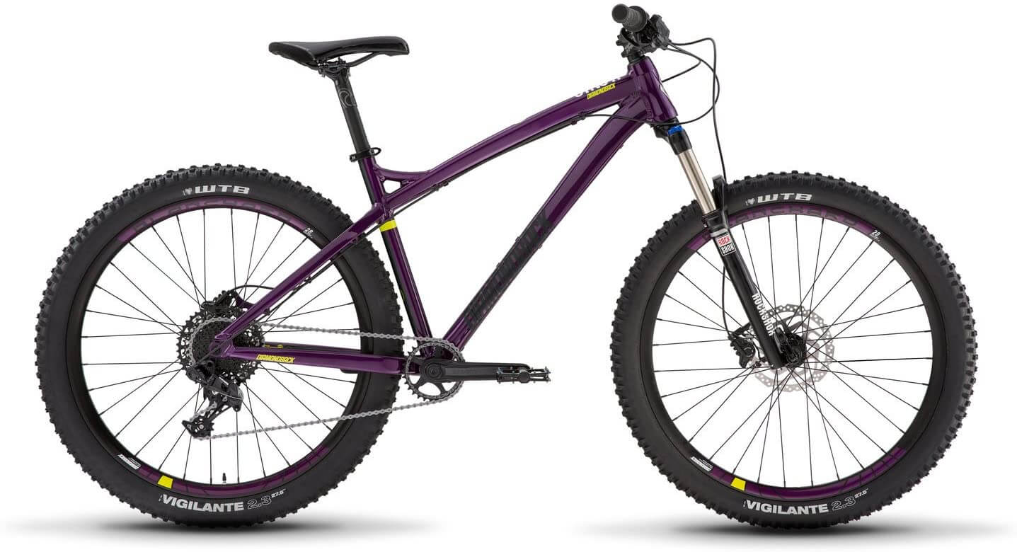 Best Bikes for Tall people
